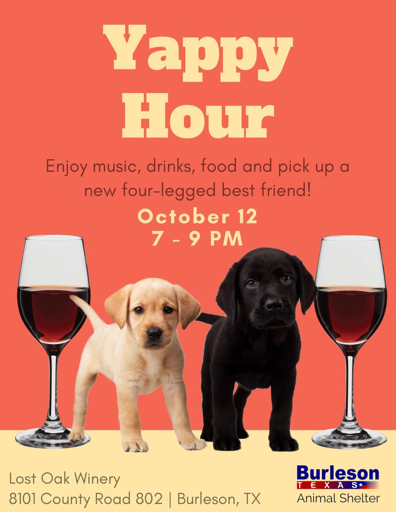 Yappy Hour Fall 2018 Flyer