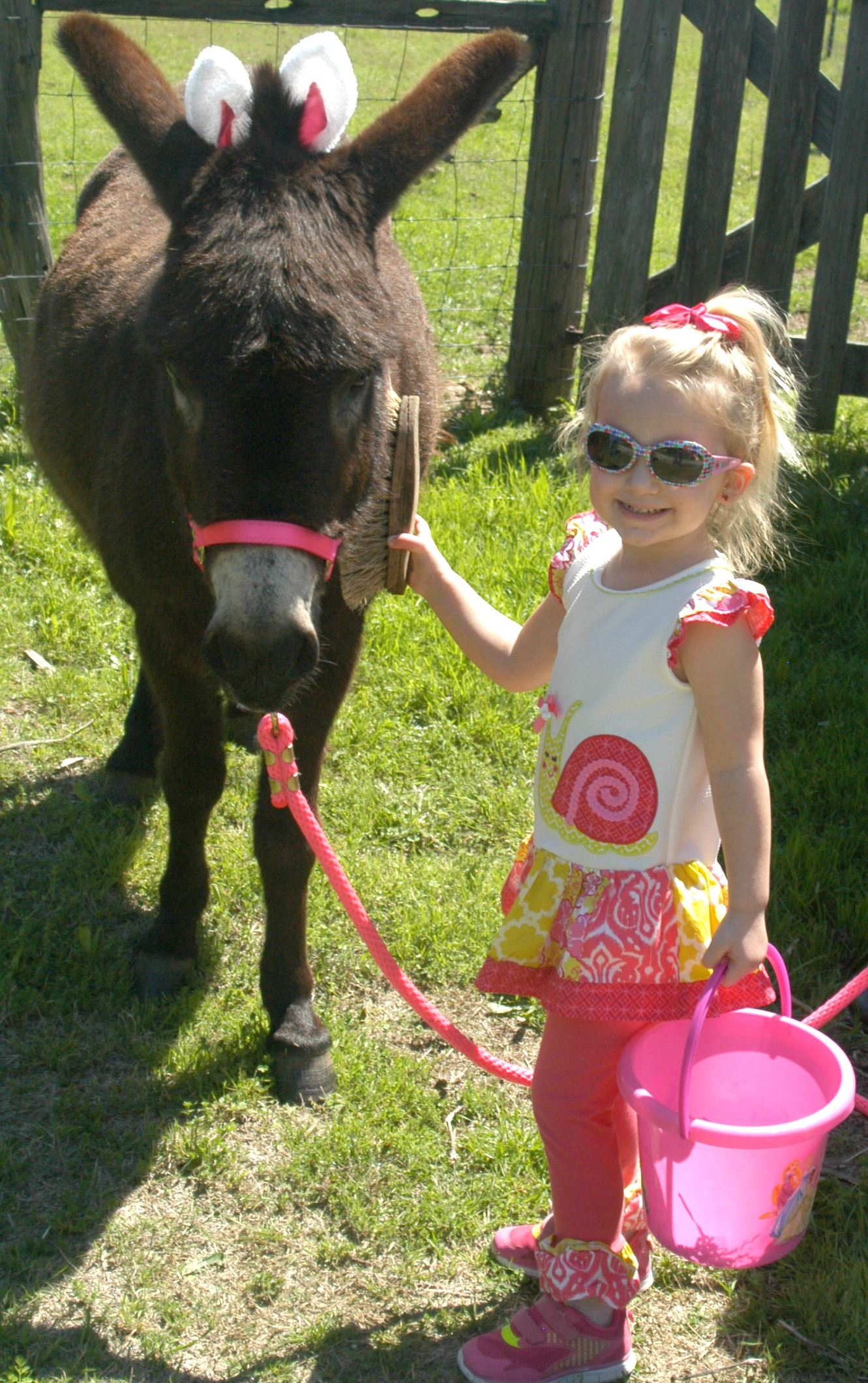 Girl and Joey the Donkey at Easter Egg Hunt