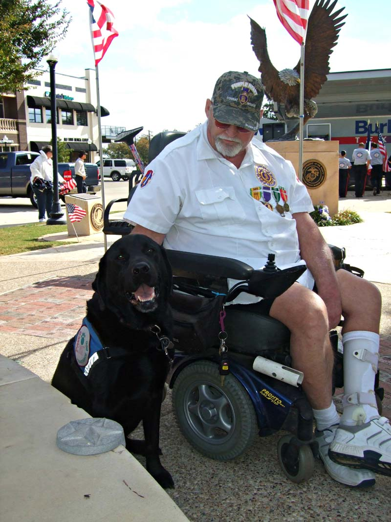 Veteran and assistance dogMilitary Vet Tribute 201